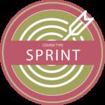 SPRINT COURSE Icon