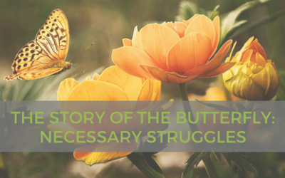 The Story of the Butterfly – Necessary Struggles